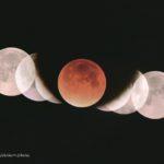 1月31日皆既月食観望会やります!